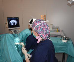 Dexeus Mujer impulsa la primera revisión sistemática de los tratamientos de estimulación ovárica en programas de ovodonación